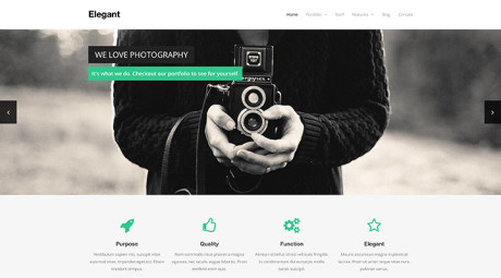 elegant-free-wordpress-themes
