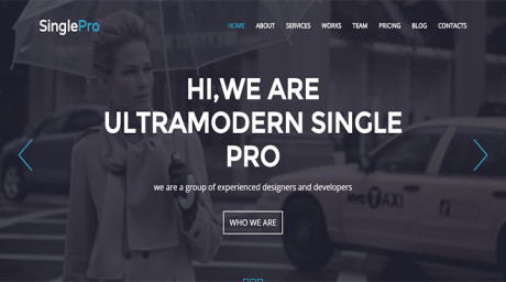SinglePro-Free-Wordpress-Portfolio-Business-Them