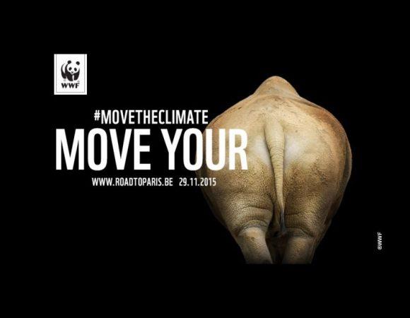 Co powiecie na niedźwiadka zamiast słynnej pandy w logo WWF?