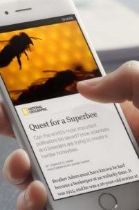 Facebook każe płacić za dostęp do artykułów i wiadomości?