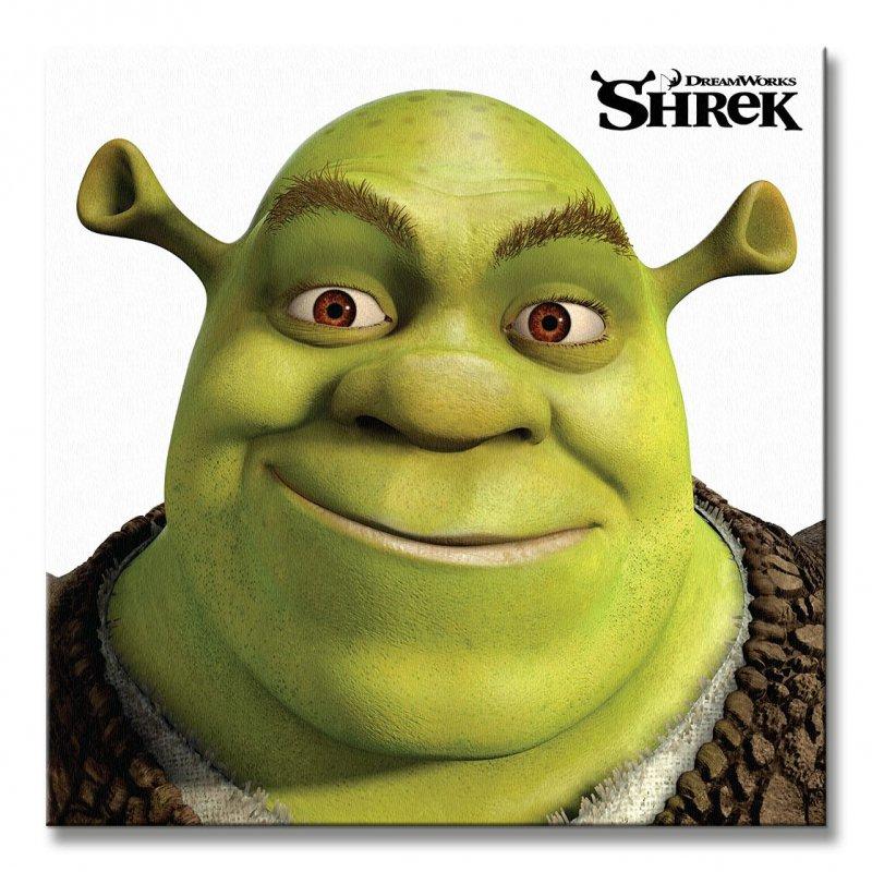 Shrek Ma Mieć Reboot Scenariusz Napisze Twórca Serii O Minionkach