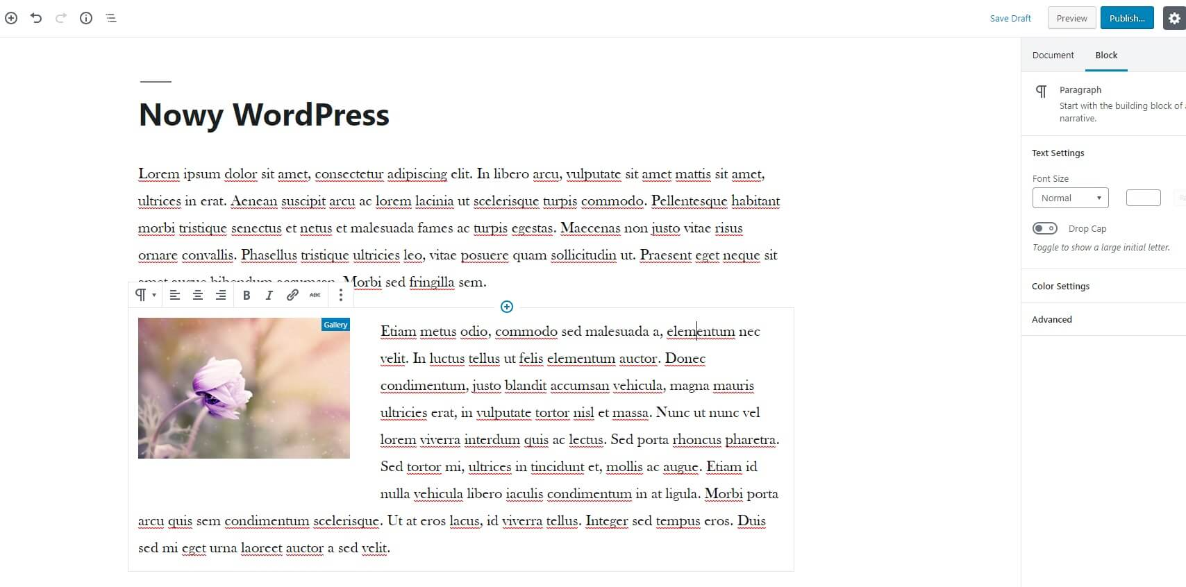 Tekst tworzony w Gutenbergu w WordPress 5.0