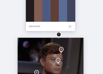 Kolorystyczny kociak – ciekawe narzędzie do tworzenia palety barw