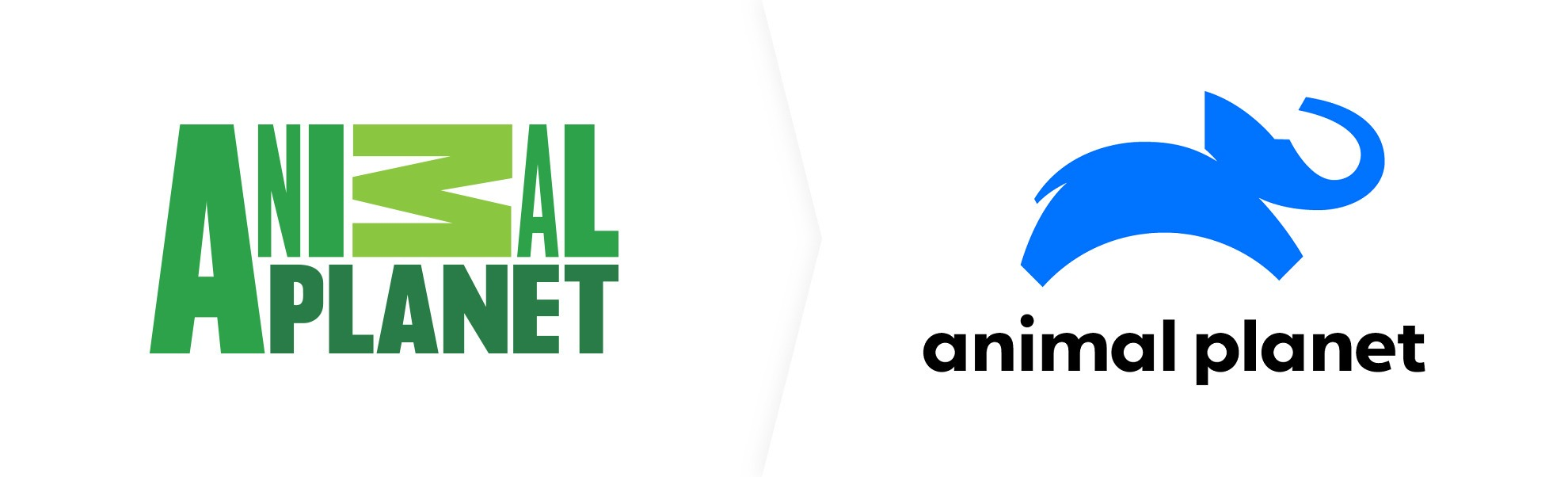 nowe logo animal planet