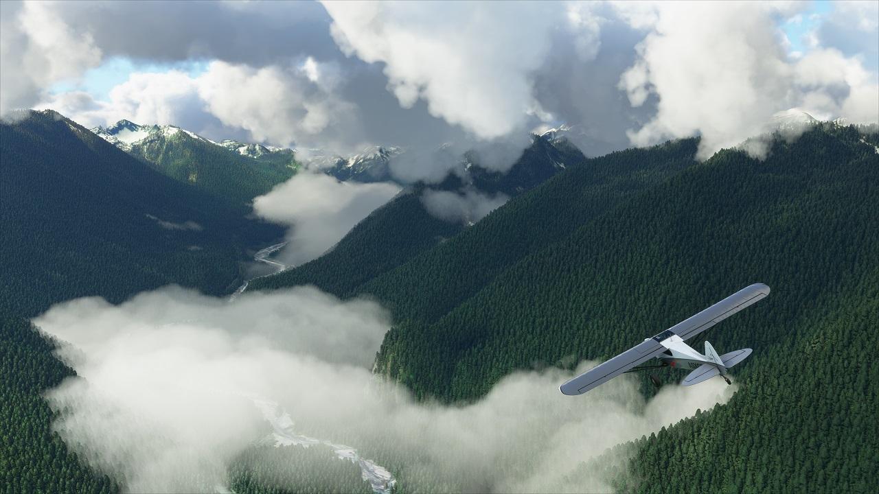 Microsoft Flight Simulator 3