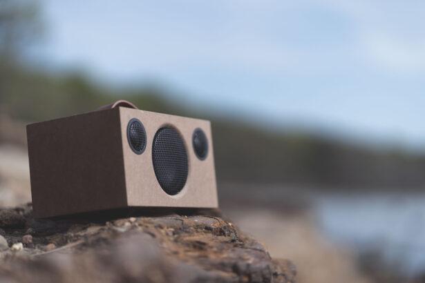 wireless bluetooth speaker T3 RAW lifestyle AudioPro 58